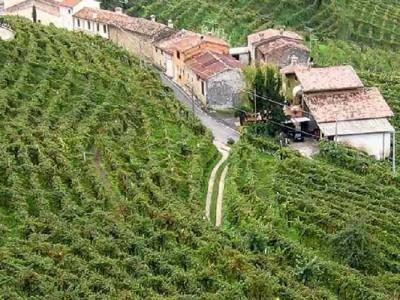 Prosecco Region and Terroir